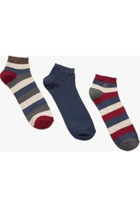 Koton Erkek 3'Lü Erkek Çorap