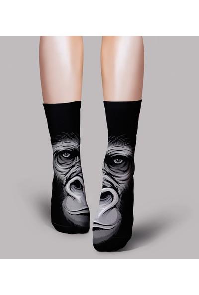 Ogobongo Soket Çorap