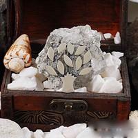 Zevahir Gümüş Hayat Ağacı Broş 925 Ayar Gümüş