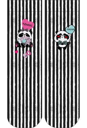 Wigglesteps Panda Valentine Kadın Çorap