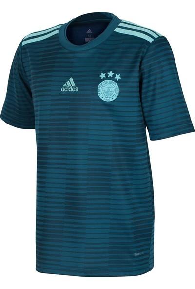 adidas Cg0678 Fenerbahçe 2018-19 Away Çocuk Forması