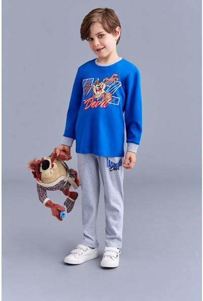 Tazmania Lisanslı Erkek Çocuk Pijama Takımı Saks