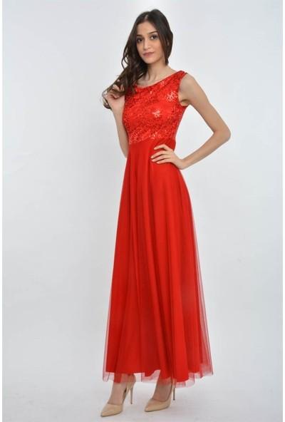 Espenica 3760 Molis Dantelli Tül Uzun Elbise
