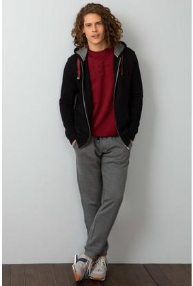 U.S. Polo Assn. Sweatshirt | 50192145-Vr046