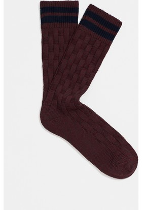 Mavi Bordo Patik Çorap