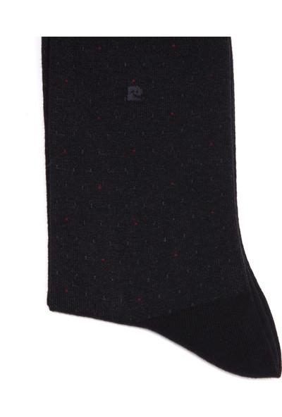 Pierre Cardin Erkek Çorap Pamuk755M