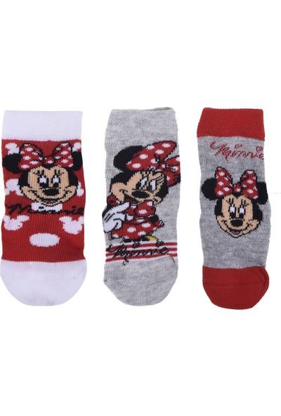 Minnie Mouse Bebek 3'lü Çorap