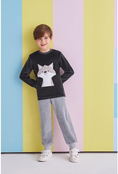 RolyPoly Fox Gray Erkek Çocuk Kadife Takım Füme