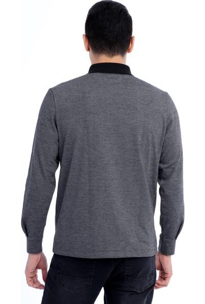 Kiğılı Polo Yaka Desenli Sweatshirt