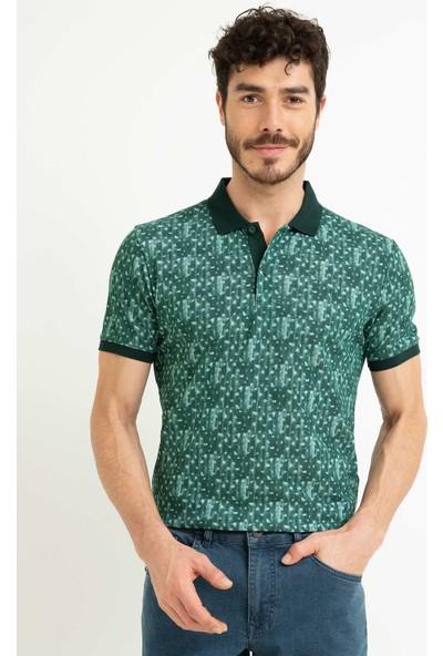 Pierre Cardin T-Shirt   50199497-Vr079
