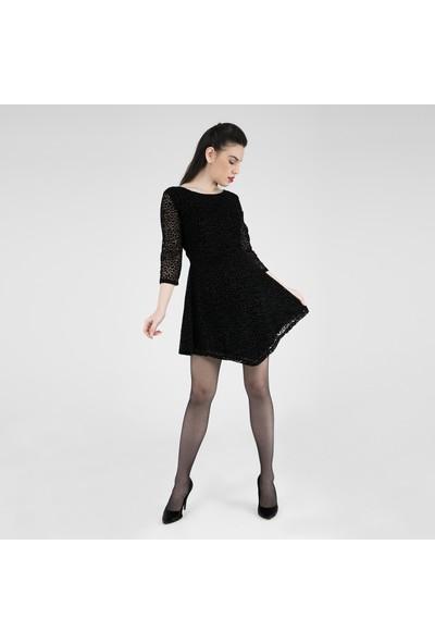 Quzu Kadın Elbise 23430745