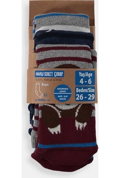 Lc Waikiki Erkek Çocuk Havlu Soket Çorap 3'lü