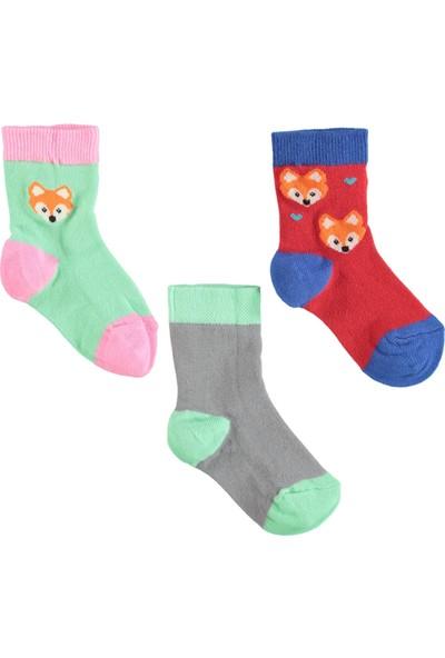 Civil Girls 3'lü Çorap 3-12 Yaş Kırmızı