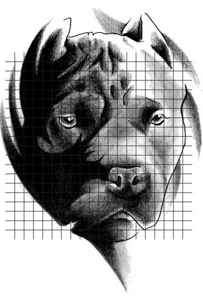 Tatfast Pit Bull 65 Geçici Dövme - Flash Tattoo