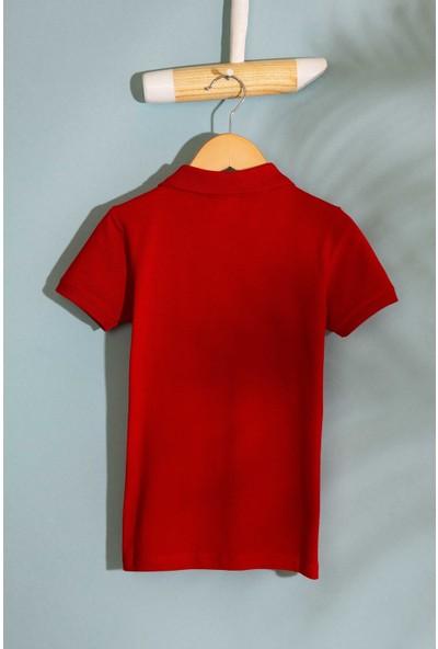 U.S. Polo Assn. T-Shirt 50199933-VR171