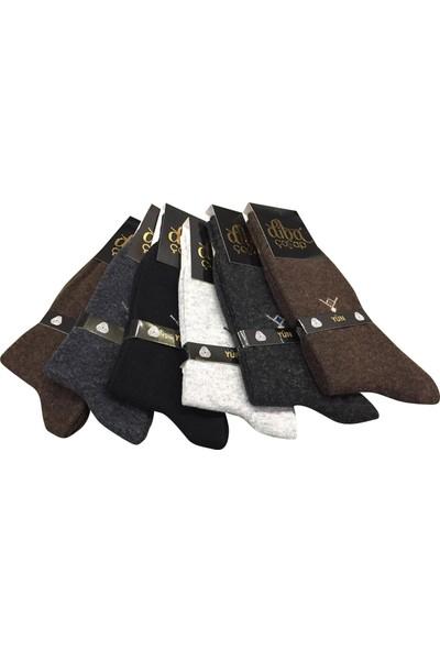 Diba 6 Lı Lambswool Yün Erkek Çorap Pamuk Karışımlı