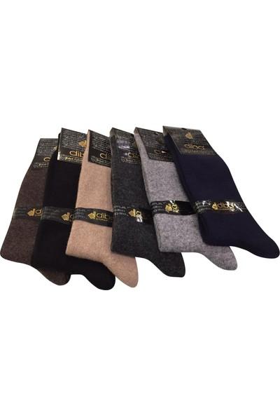 Diba 6 Lı Lambswool Yün Erkek Çorap