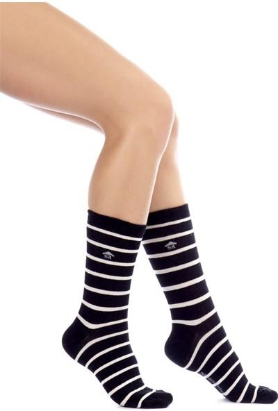 The Socks House Çember Desenli Çorap