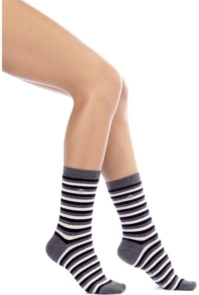 The Socks House Çizgi Desenli Çorap