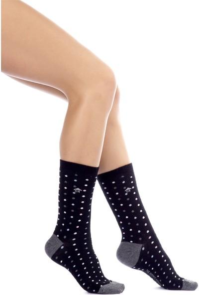 The Socks House Puan Desenli Çorap