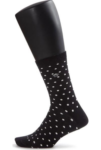 The Socks House Küçük Puantiye Desenli Çorap