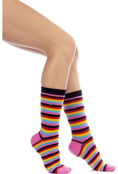 The Socks House Multi Çizgi Desenli Çorap