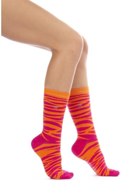 The Socks House Iyi His Desenli Çorap