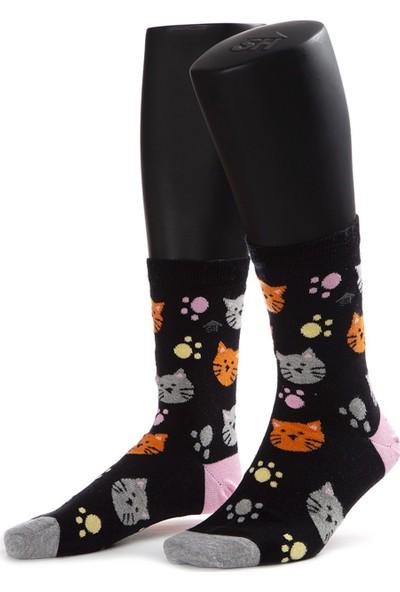 The Socks House Kedi Desenli Çorap