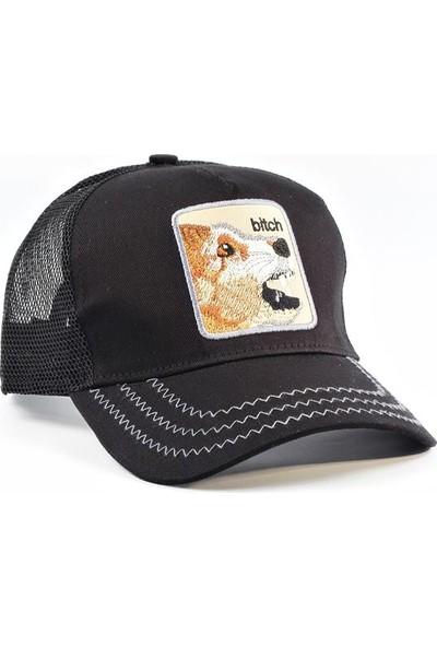 Tek Siyah Bitc-H Dişi Köpek Cap Şapka Şapka Yazlık
