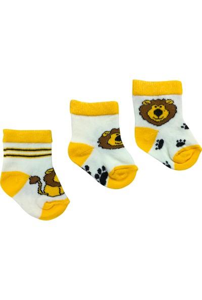 By Leyal For Kids Erkek Bebek 3 Lü Çorap Set