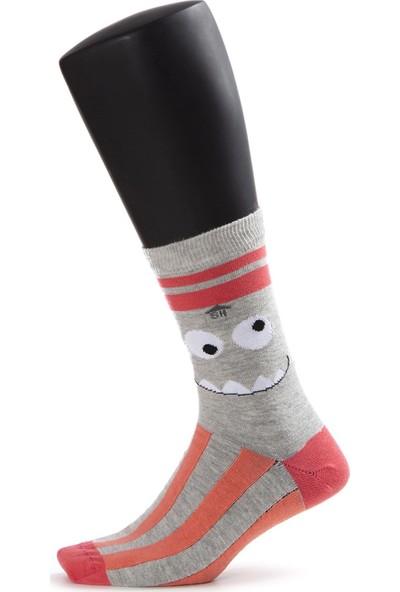 The Socks House Kadın 4'lü Çılgın Çorap seti