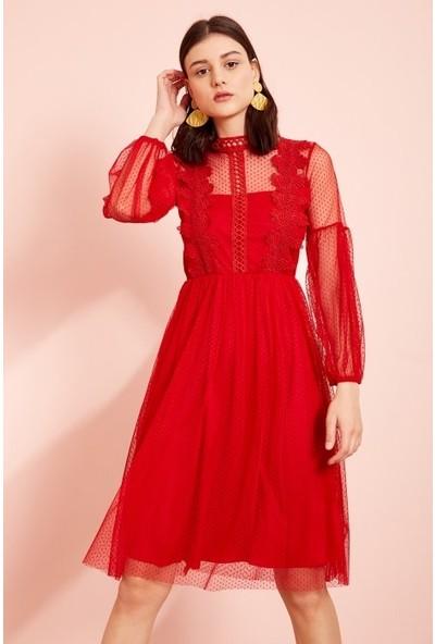 Freestar Beli Lastikli Dantelli Elbise-Kırmızı