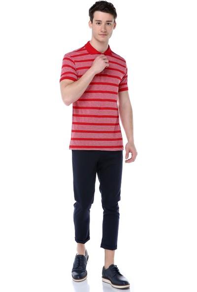 Markalook Erkek Çizgili Polo Yaka T-Shirt
