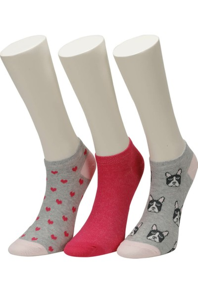 Miss F Doggy 3 L Gr Kadın Patik Çorap