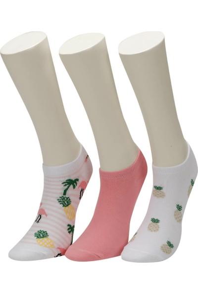 Miss F Vac 3 Lu Ptk-W Pembe Mult Kadın Patik Çorap