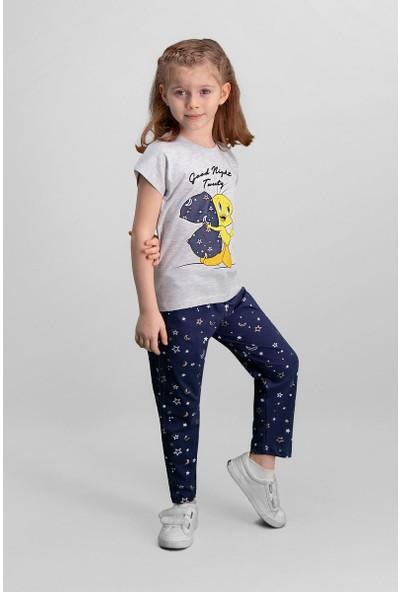 Looney Tunes Tweety Lisanslı Açık Gri Kız Çocuk Pijama Takımı