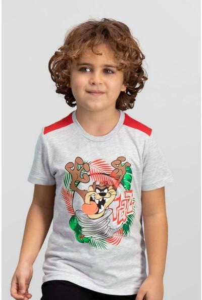 Looney Tunes Lisanslı Açık Gri Erkek Çocuk T-Shirt