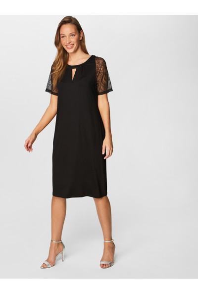 Faik Sönmez Dantel Detaylı Elbise 38305
