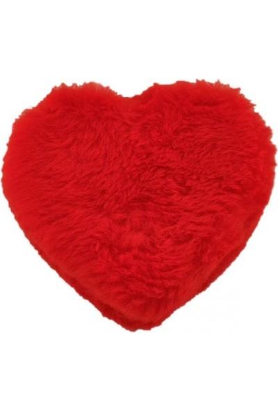 Sevgiliye 365 Gün Aşk Notlu Peluş Kalp Hediye Kutusu