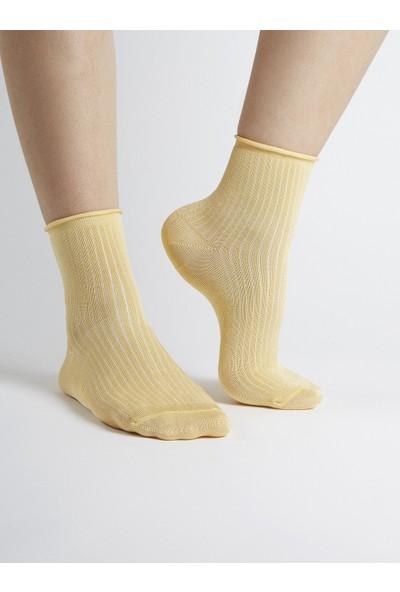 Faik Sönmez Çorap 38491