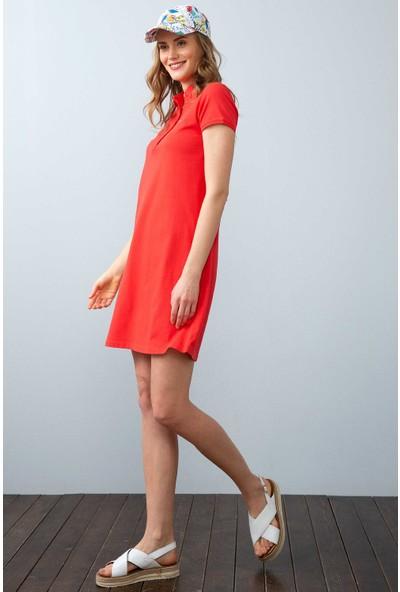 U.S. Polo Assn. Kadın Örme Elbise 50204931-Vr039