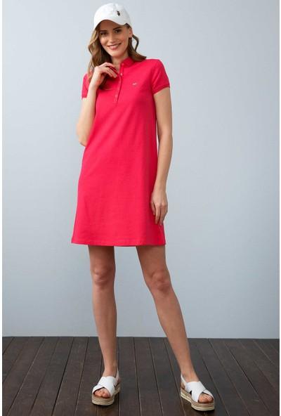 U.S. Polo Assn. Kadın Örme Elbise 50204931-Vr162