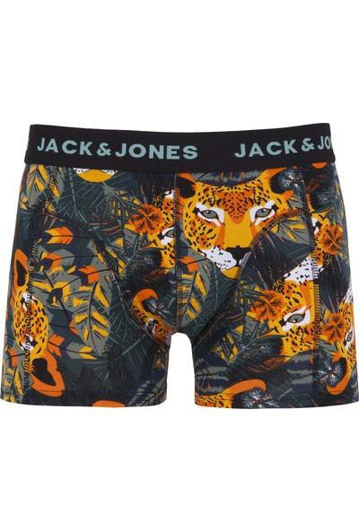 Jack & Jones Accessories Jacanimals Erkek Boxer 12149044