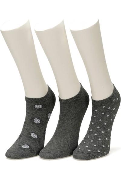 Miss F Rose 3 L Gri Kadın Patik Çorap