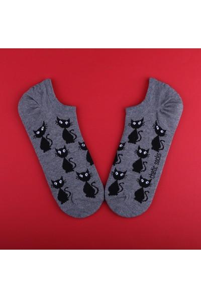 Chetic Kara Kedi̇ Desenli̇ Gri̇ Sneaker Kadın Çorap