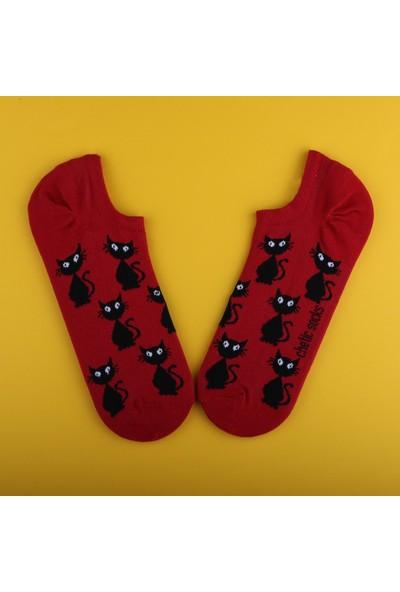 Chetic Kara Kedi̇ Desenli̇ Kirmizi Sneaker Kadın Çorap