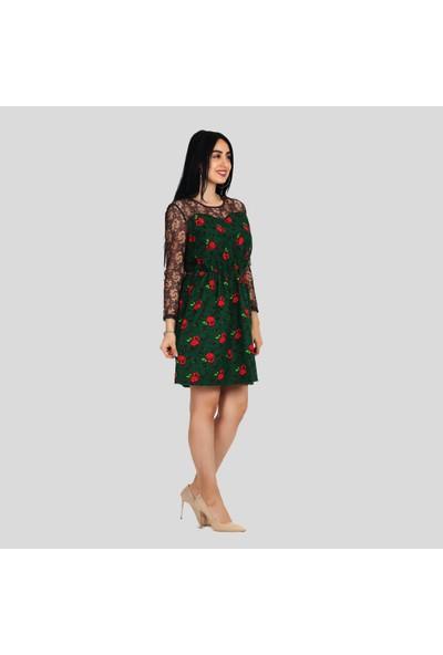 İna Dress Kadın Divitin Pazenden Dantel Detaylı Naturel Kışlık Elbise