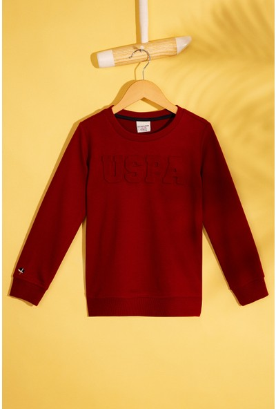 U.S. Polo Assn. Sweatshirt 50207319-KR0227
