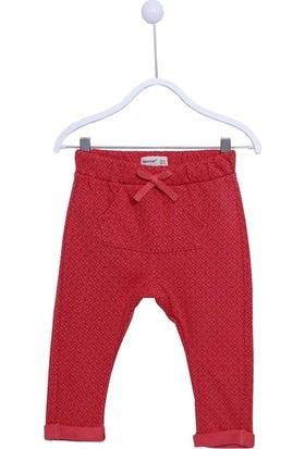 Silversun Erkek Bebek Pamuklu Pantolon JP 111041