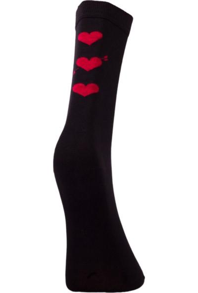 The Don Kalpli Bambu Kadın Çorap Siyah